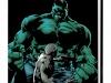 hulk_bp_hc